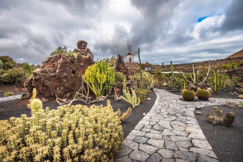 Κάκτοι στον κήπο κάκτων, Lanzarote, Κανάρια νησιά, Ισπανία στοκ φωτογραφίες με δικαίωμα ελεύθερης χρήσης