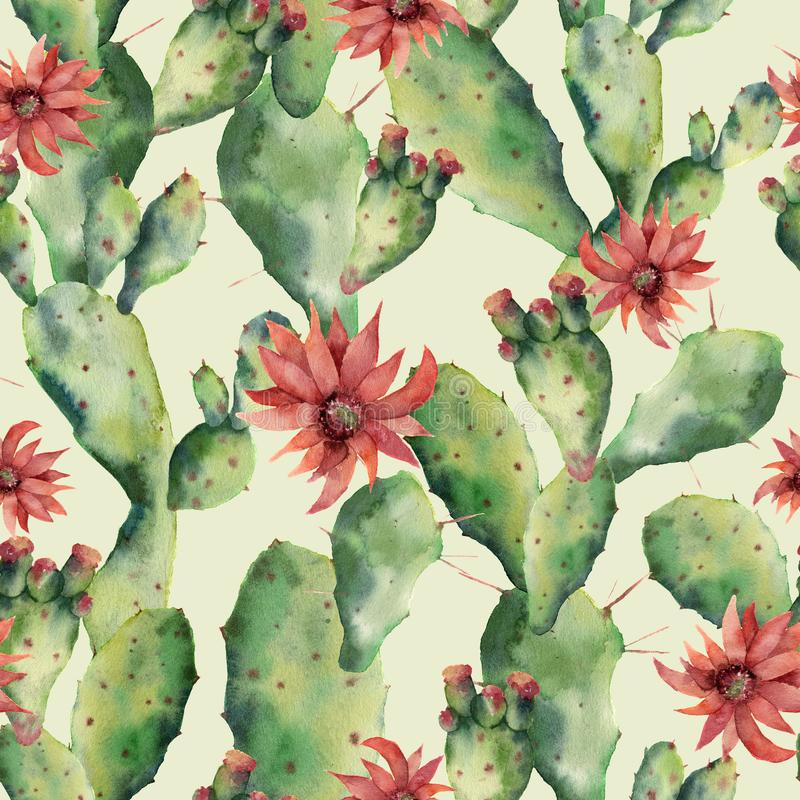 Κάκτοι Watercolor και άνευ ραφής patttern λουλουδιών Χρωματισμένο χέρι opuntia που απομονώνεται στο άσπρο υπόβαθρο Απεικόνιση για ελεύθερη απεικόνιση δικαιώματος