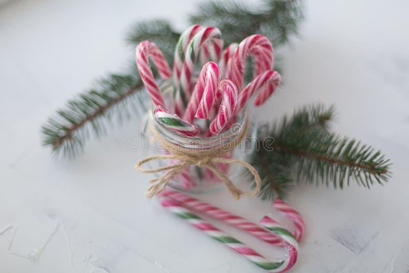 Κάλαμος καραμελών Χριστουγέννων στους κλάδους βάζων γυαλιού των ερυθρελατών στο άσπρο θολωμένο υπόβαθρο στοκ εικόνα