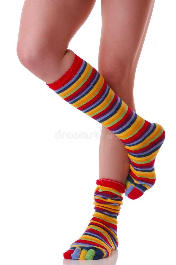 Κάλτσες, πολλά χρώματα στοκ εικόνα
