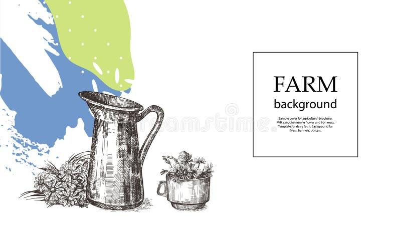 Κάλυψη δειγμάτων για το γεωργικό φυλλάδιο Κανάτα, φλυτζάνι και ανθοδέσμη των άγριων λουλουδιών Πρότυπο για το γαλακτοκομικό αγρόκ διανυσματική απεικόνιση