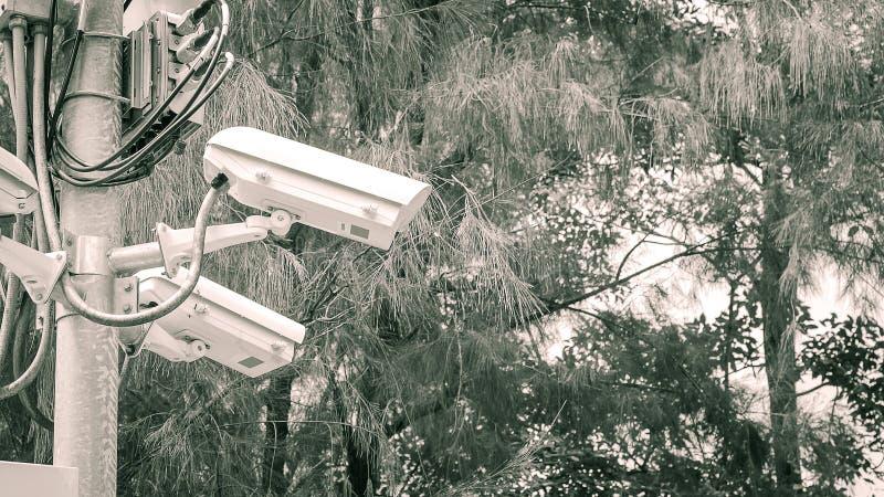 Κάμερα ασφαλείας στη θέση στοκ φωτογραφίες με δικαίωμα ελεύθερης χρήσης