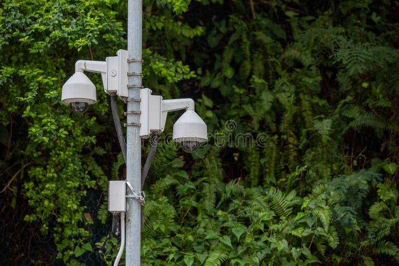 Κάμερα παρακολούθησης στις άγρια περιοχές στοκ εικόνα
