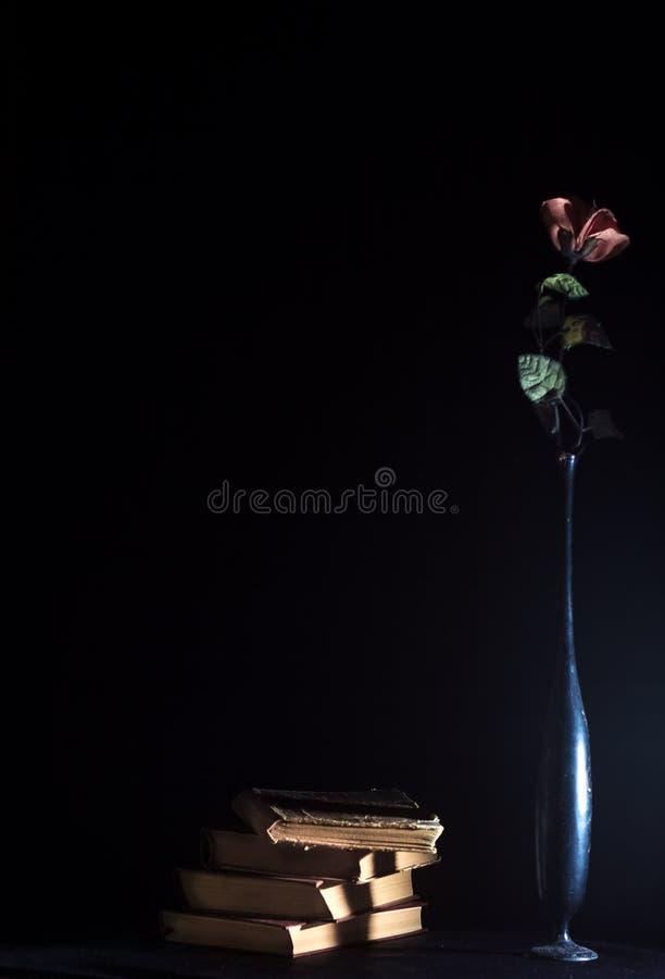 Κάποιος τρύγος, λουλούδι στο σκοτάδι στοκ εικόνες
