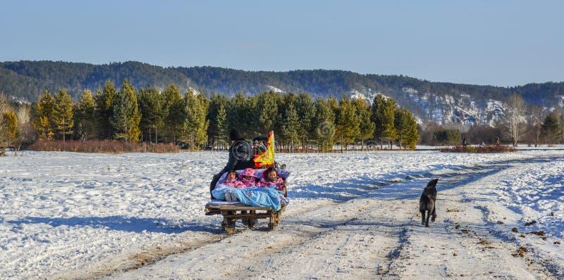 Κάρρο αλόγων που τρέχει στο δρόμο χιονιού στοκ φωτογραφία