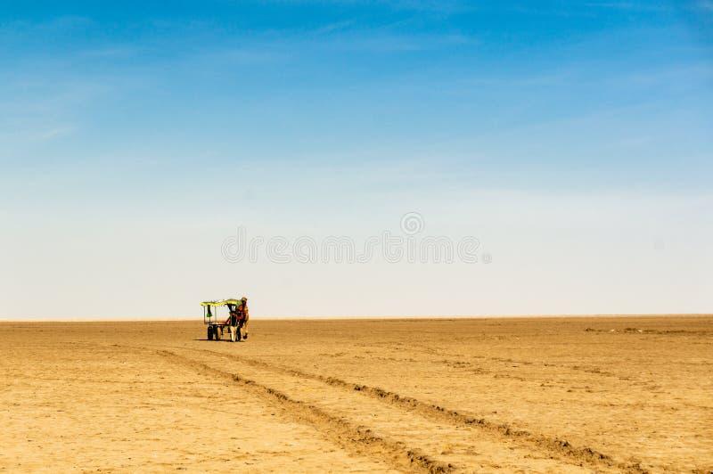 Κάρρο καμηλών στην ευρεία έκταση Rann Kutchh Gujarat Ινδία στοκ φωτογραφίες με δικαίωμα ελεύθερης χρήσης