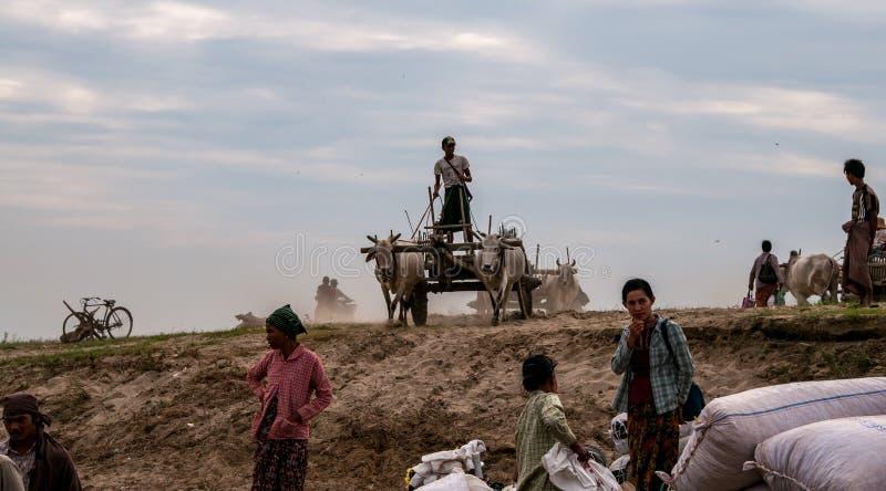 Κάρρο ποταμών Irrawaddy στοκ εικόνες