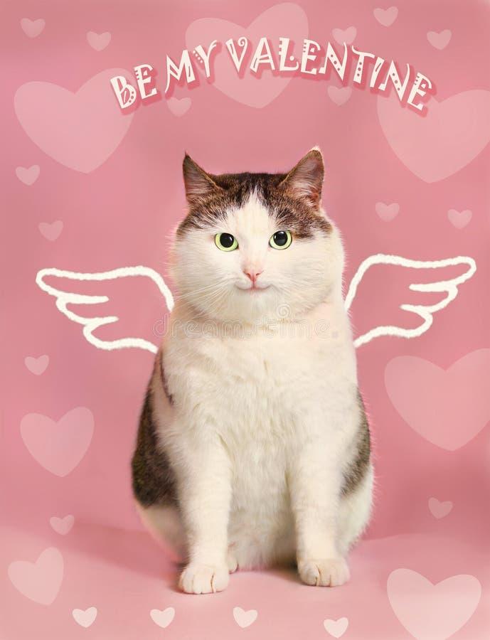 Κάρτα βαλεντίνων με την παχιά γάτα χαμόγελου στοκ φωτογραφία