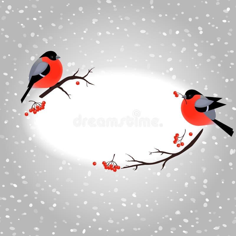 Κάρτα Χριστουγέννων με τα χαριτωμένα bullfinches και θέση για το κείμενό σας απεικόνιση αποθεμάτων