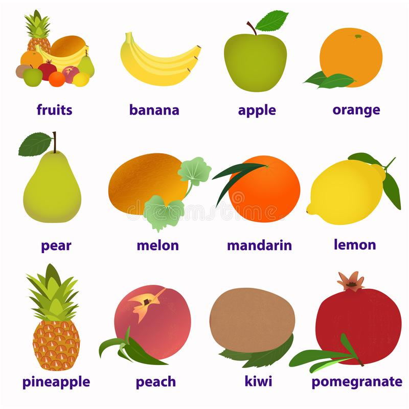 Κάρτες φρούτων για την εκμάθηση των αγγλικών ελεύθερη απεικόνιση δικαιώματος