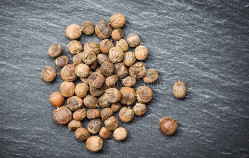 Κάστανα άψητα στο σκοτεινό πιάτο/το γένος Castanea ή το ταϊλανδικό και ιαπωνικό κάστανο Ασιάτης στοκ εικόνες
