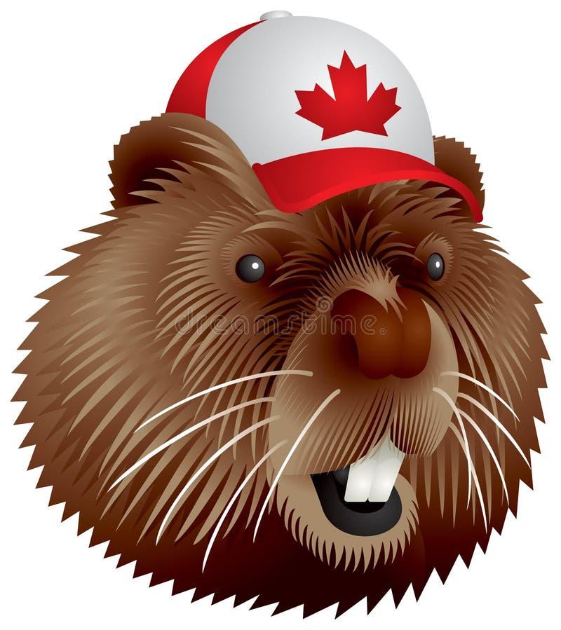 κάστορας Καναδός διανυσματική απεικόνιση