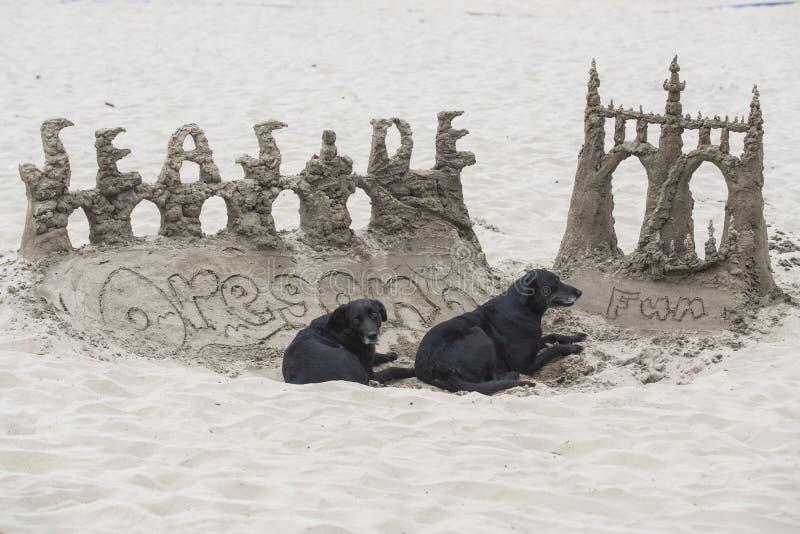 Κάστρο άμμου με δύο σκυλιά στοκ φωτογραφία