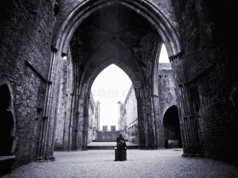 κάστρο Ιρλανδία στοκ εικόνα με δικαίωμα ελεύθερης χρήσης