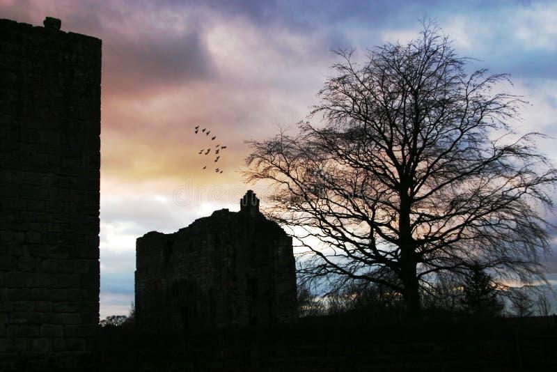 κάστρο και λοιποί στοκ φωτογραφία με δικαίωμα ελεύθερης χρήσης