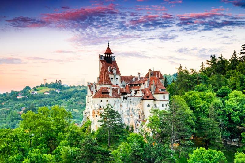 Κάστρο πίτουρου, Ρουμανία, Τρανσυλβανία στοκ φωτογραφίες