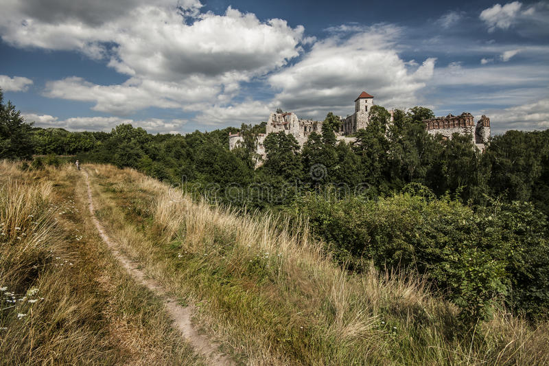 κάστρο Πολωνία στοκ φωτογραφίες με δικαίωμα ελεύθερης χρήσης