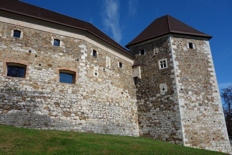 Κάστρο της Λιουμπλιάνα με εικόνα πύργου στοκ εικόνες με δικαίωμα ελεύθερης χρήσης