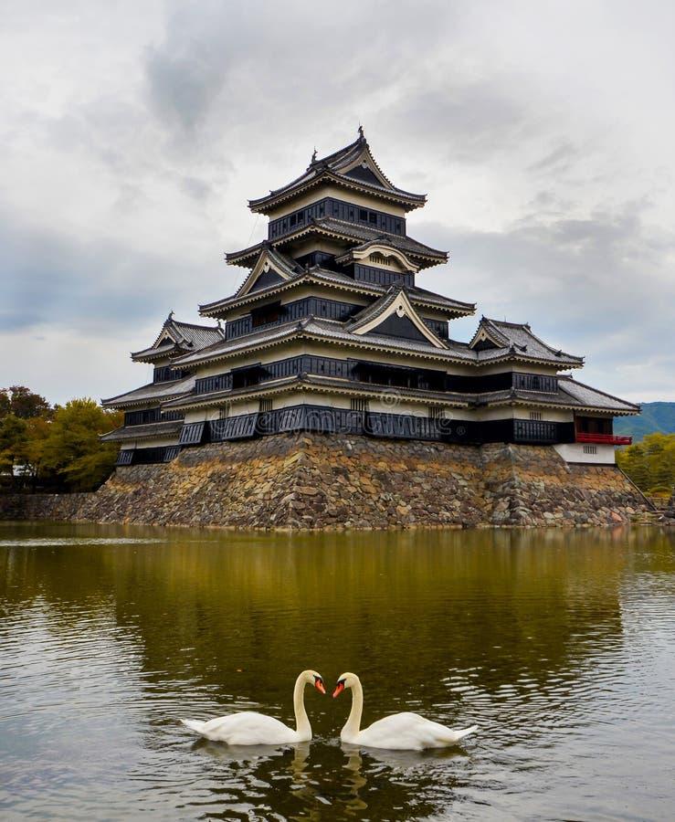 Κάστρο του Ματσουμότο το φθινόπωρο με δύο κύκνους στοκ εικόνες