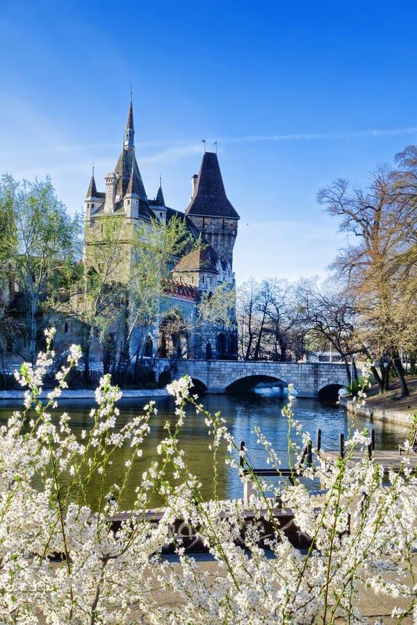 Κάστρο Vajdahunyad με το δέντρο άνοιξη στη Βουδαπέστη, Ουγγαρία στοκ φωτογραφίες με δικαίωμα ελεύθερης χρήσης