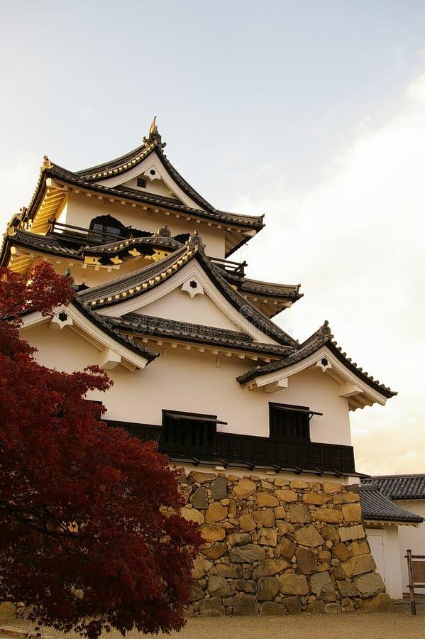 κάστρων hikone που αφήνεται μπροστινό στοκ φωτογραφία