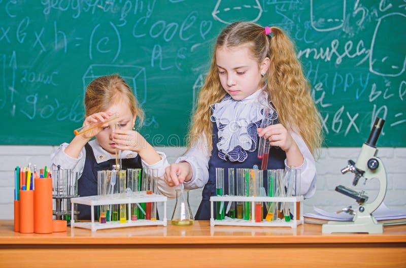 Κάτι απίστευτο περιμένει να μαθευτεί Μικρή μελέτη σπουδαστών Μικροί μαθητές που μελετούν τη χημεία Έξυπνος στοκ φωτογραφίες με δικαίωμα ελεύθερης χρήσης