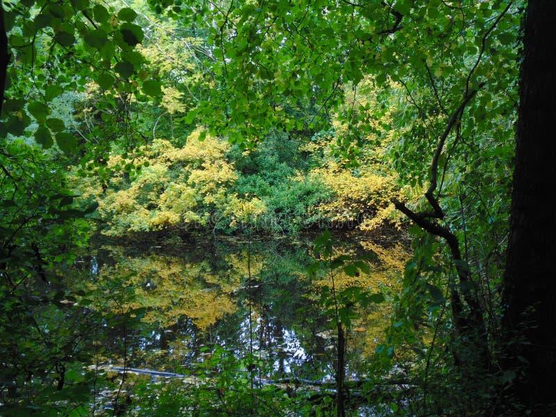 Κάτω από από την όχθη ποταμού στοκ φωτογραφίες με δικαίωμα ελεύθερης χρήσης