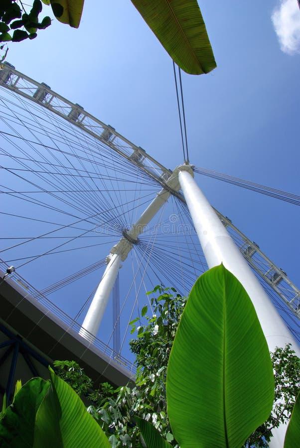 κάτω από το ιπτάμενο Σινγκαπούρη στοκ εικόνες