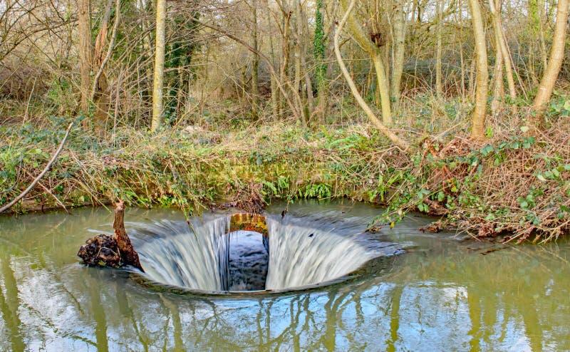 Κάτω τα κρυμμένα πλαγκόλ στο ποτάμι του δάσους στοκ φωτογραφία με δικαίωμα ελεύθερης χρήσης
