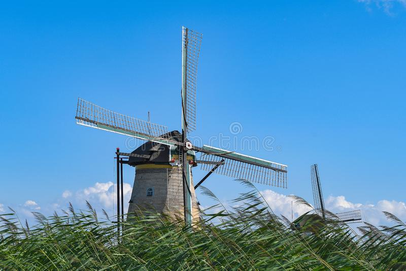 Κάτω Χώρες γέροι ανεμόμυλοι σε γρασίδι στοκ εικόνες με δικαίωμα ελεύθερης χρήσης