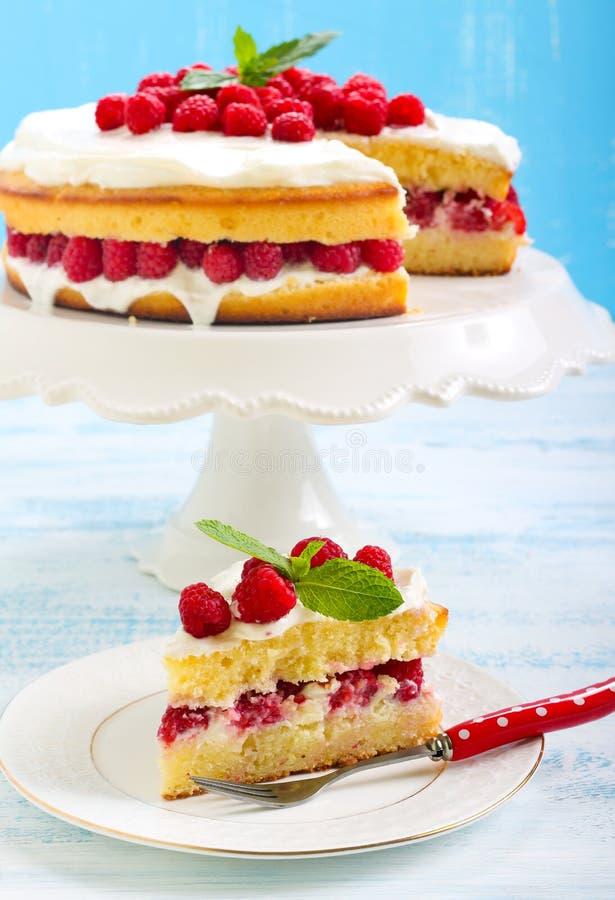 Κέικ λεμονιών με το σμέουρο στοκ φωτογραφία με δικαίωμα ελεύθερης χρήσης