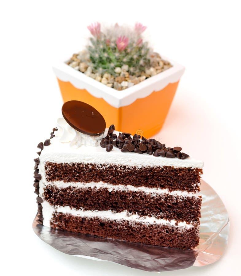 Κέικ και κάκτος στρώματος τσιπ σοκολάτας φραγμών γάλακτος στο δοχείο λουλουδιών στοκ φωτογραφία με δικαίωμα ελεύθερης χρήσης