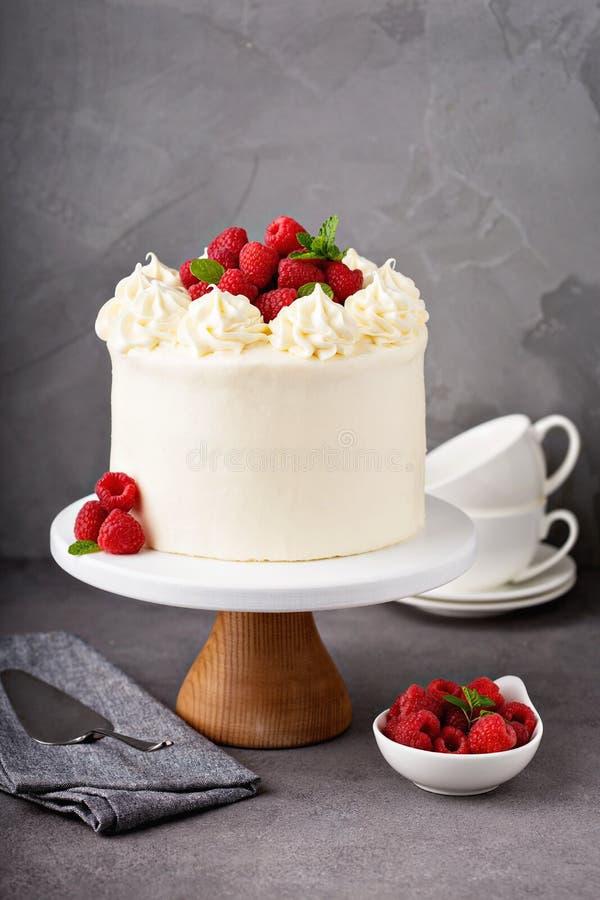 Κέικ σμέουρων βανίλιας με το άσπρο πάγωμα στοκ εικόνες