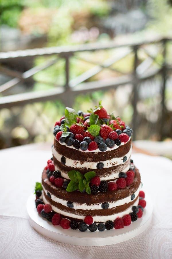 Κέικ σοκολάτας με το φρέσκο μούρο στοκ φωτογραφία