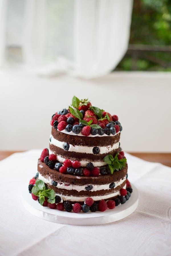 Κέικ σοκολάτας με το φρέσκο μούρο στοκ εικόνα με δικαίωμα ελεύθερης χρήσης