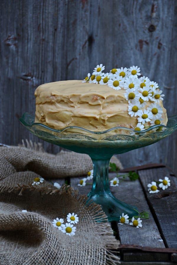 Κέικ στη στάση κέικ στοκ φωτογραφία με δικαίωμα ελεύθερης χρήσης