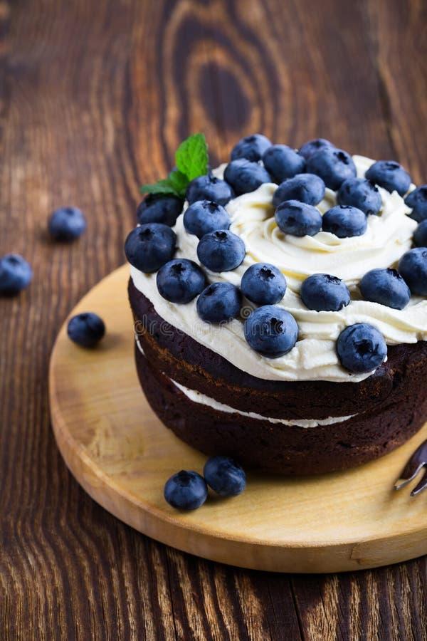 Κέικ στρώματος σοκολάτας μούρων με τα βακκίνια στοκ φωτογραφία με δικαίωμα ελεύθερης χρήσης