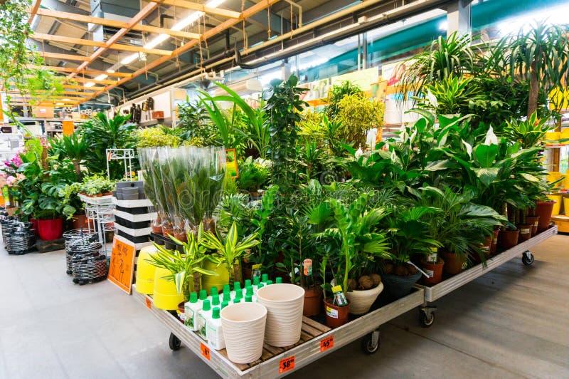 Κέντρο κήπων στοκ εικόνα με δικαίωμα ελεύθερης χρήσης