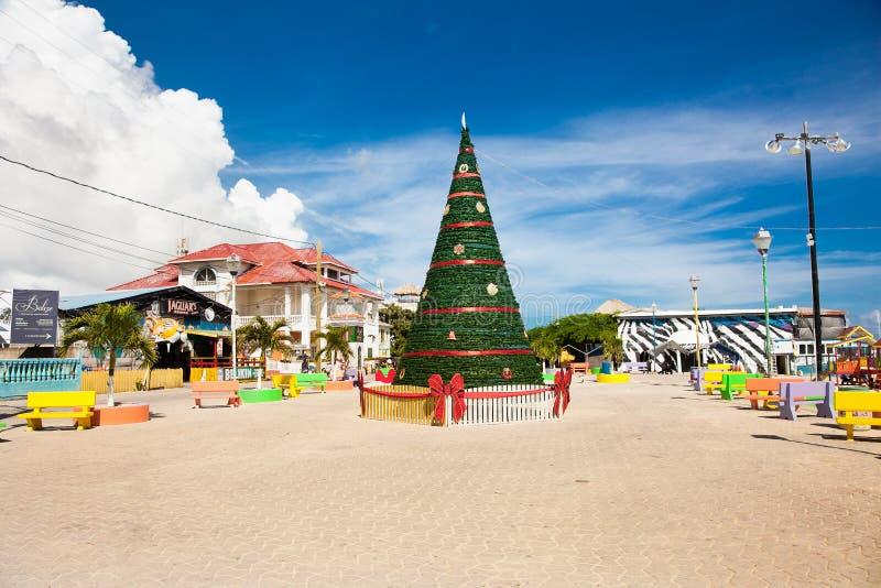 Κέντρο του νησιού SAN Pedro που διακοσμείται με το χριστουγεννιάτικο δέντρο, Μπελίζ στοκ φωτογραφία με δικαίωμα ελεύθερης χρήσης