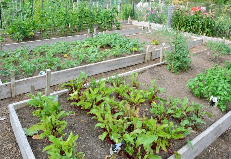 Κήποι διανομής στοκ εικόνα με δικαίωμα ελεύθερης χρήσης