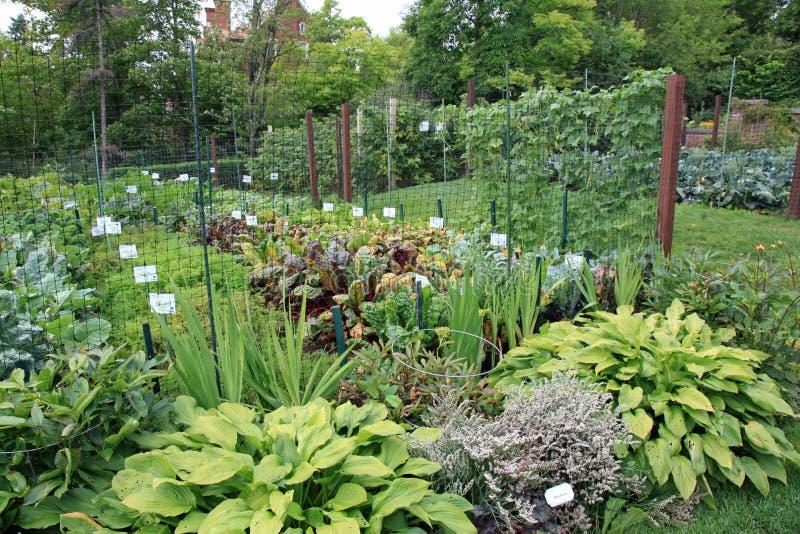 Κήποι μεγάρων Congdon Glensheen στοκ φωτογραφία με δικαίωμα ελεύθερης χρήσης