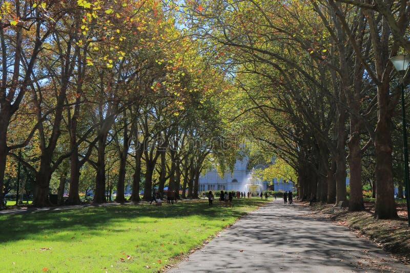 Κήποι Μελβούρνη Αυστραλία του Carlton στοκ εικόνες με δικαίωμα ελεύθερης χρήσης