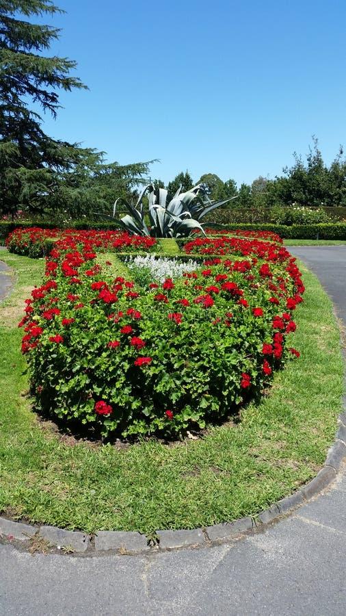 Κήποι του Καντέρμπουρυ στοκ εικόνες με δικαίωμα ελεύθερης χρήσης
