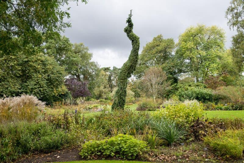 Κήποι Bressingham - δυτικά Diss στο Norfolk, Αγγλία - ενωμένη στοκ εικόνα