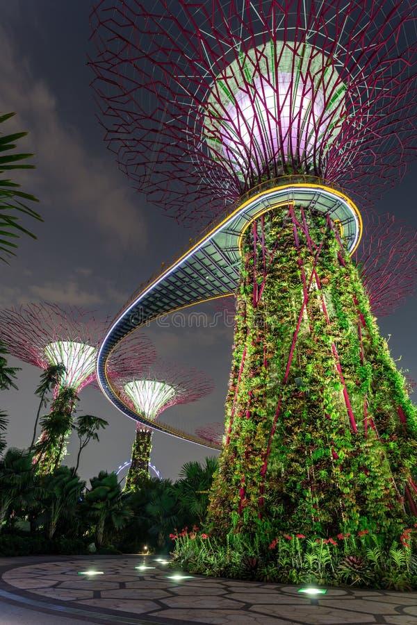 Κήπος από τον κόλπο Σιγκαπούρη στοκ φωτογραφία