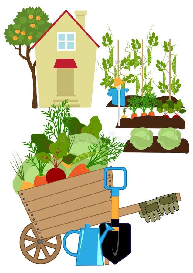 Κήπος λαχανικών ελεύθερη απεικόνιση δικαιώματος
