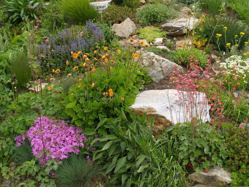 Κήπος βράχου την άνοιξη στοκ εικόνες