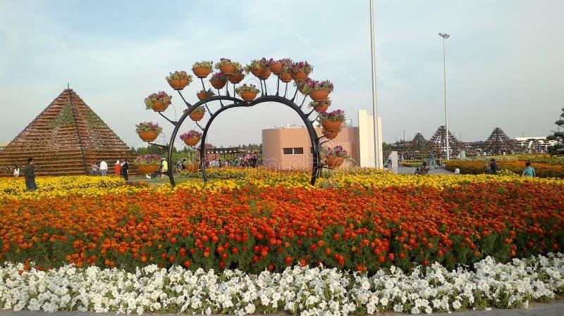 Κήπος θαύματος, Ντουμπάι, Ηνωμένα Αραβικά Εμιράτα στοκ εικόνα με δικαίωμα ελεύθερης χρήσης