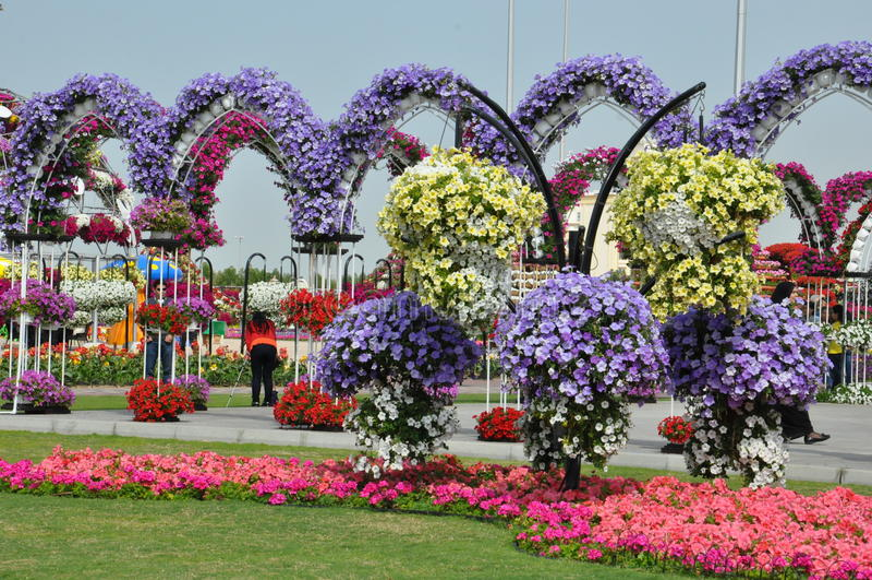 Κήπος θαύματος του Ντουμπάι στα Ε.Α.Ε. στοκ φωτογραφίες με δικαίωμα ελεύθερης χρήσης