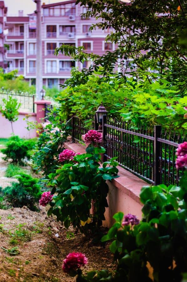 Κήπος διαμερισμάτων στοκ φωτογραφίες με δικαίωμα ελεύθερης χρήσης